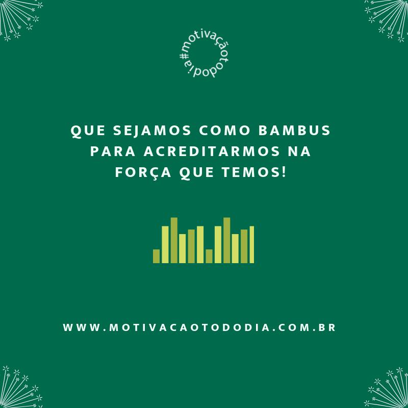 Como o bambu (1)